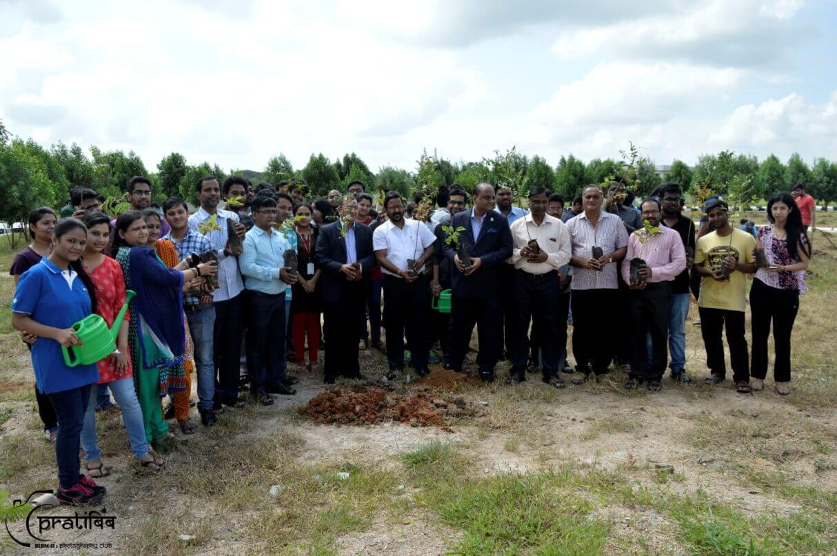 Planted Sapling of Trees in Campus