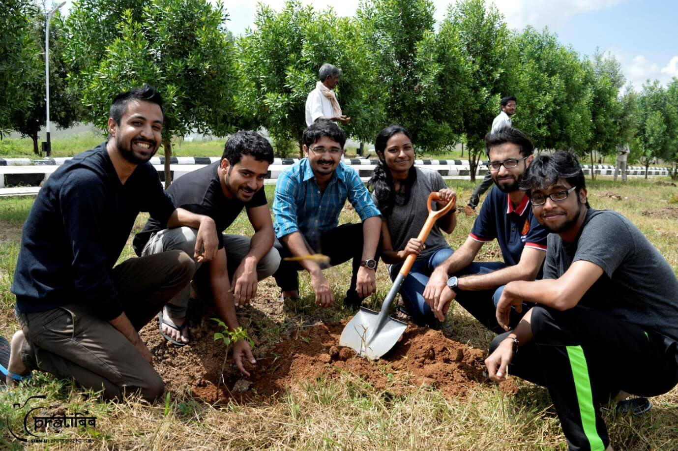 Tree Plantation by Students in Campus Premises